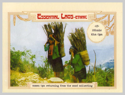 #ໃປສະນີບັດ# Carte postale Essential Laos #05 lao-collectibles.